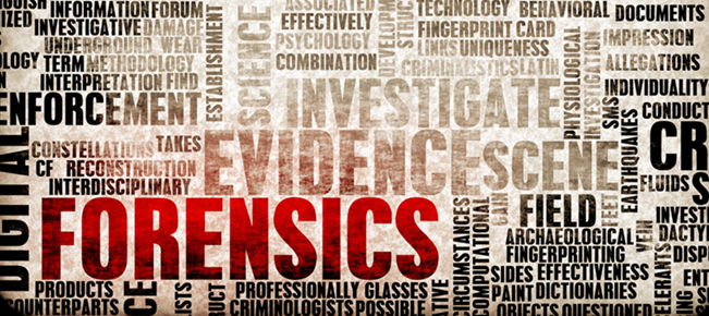 slika poslovna forenzika